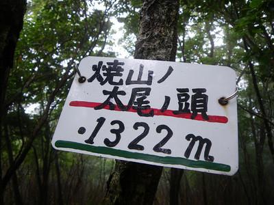 Resize2789